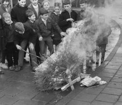 Kerstbomen rauzen - credits Omroep West