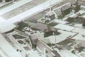 Landhuis-leigedekt - 5 Meer en Boschlaan 102 (1928)